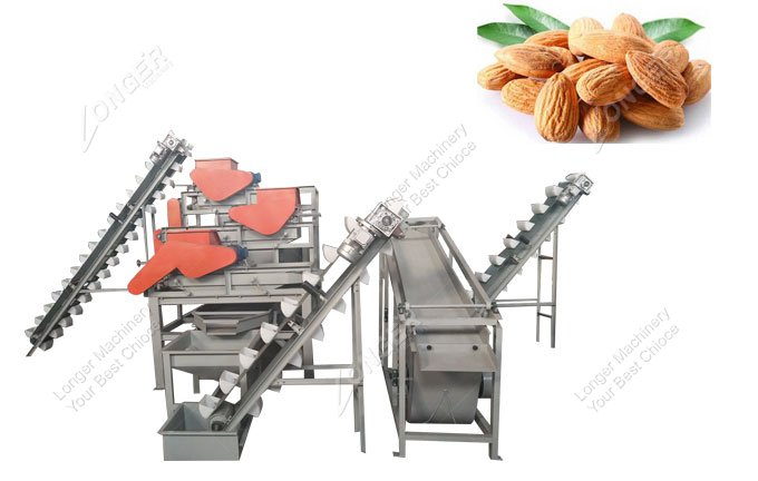 almond processing equipment